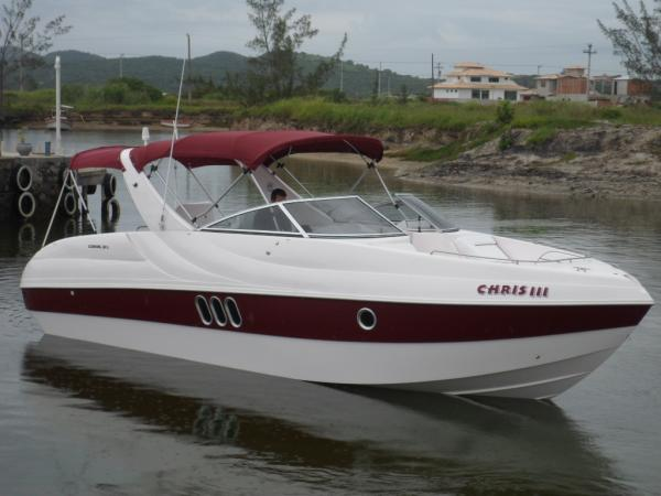 Coral 31